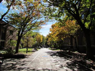 Locust Walk approaching the Quad